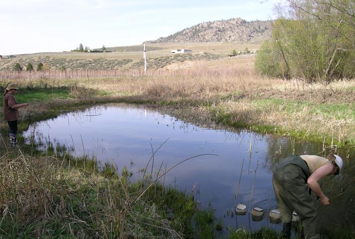 Tests environnementaux
