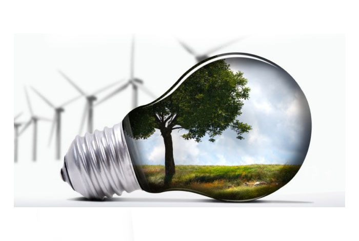 ეკოლოგიური ტესტები