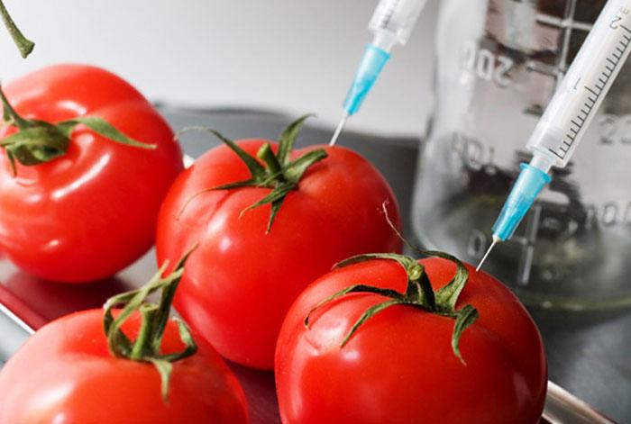 تجزیه و تحلیل GMO-GMO