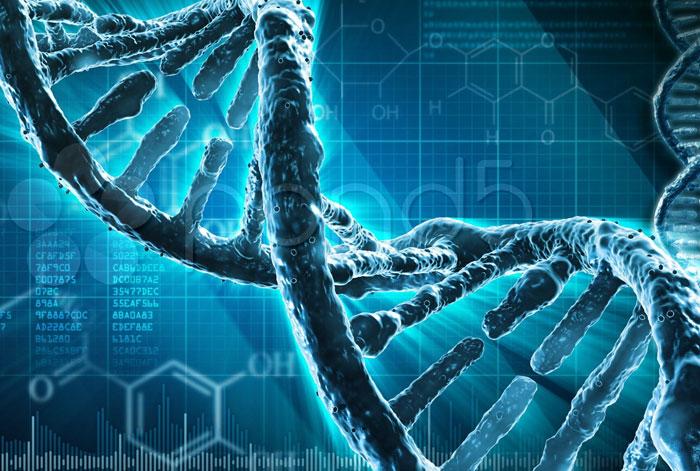 Μοριακή Βιολογική Ανάλυση
