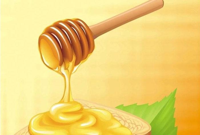 Test et analyse du miel